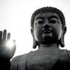 Descubre el mundo Budista